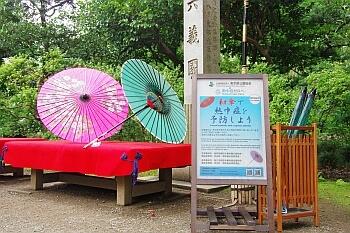 和傘_350
